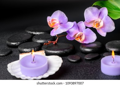 Beautiful spa concept of black zen stones with drops, lilac orchid (phalaenopsis), candles in cockshell and big green leaf, close up