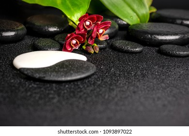 Beautiful spa concept of zen and Yin-Yang stones with drops, red orchid (phalaenopsis) and green leaf. Copy space