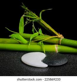 beautiful spa setting of symbol Yin Yang stones and natural bamboo stems with dew, closeup