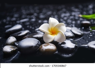 beautiful spa still life of  with frangipani,and bamboo leaves,zen stones