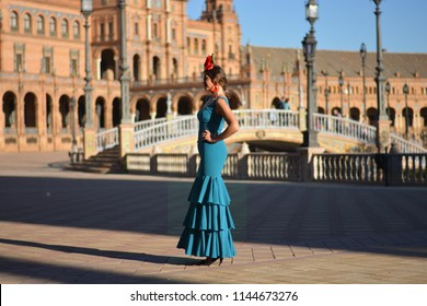 the beautiful spanish girl with flamenco dress. Looks at the lights of the sunset