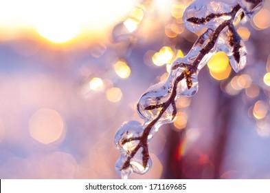 Beautiful sparkling Winter scene