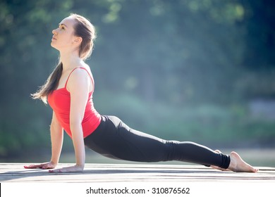 Beautiful sporty fit young woman in sportswear working out outdoors on summer day, doing exercise for back, urdhva mukha shvanasana (upward facing dog posture), full length, side view
