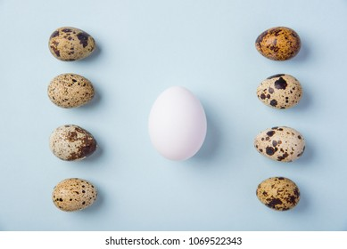 Beautiful spotted fresh quail and chicken eggs on a gentle blue paper background