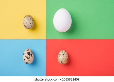 Beautiful spotted fresh quail and chicken eggs on a green, blue, yellow and red paper background