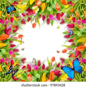 Beautiful spring background with free space for text