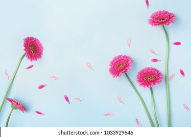 Beautiful spring background with pink flowers and petals. Floral frame. Flat lay style.