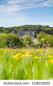 Beautiful spring day. castle Cesky Sternberk with blue sky and blooming dandelion foreground in Czech republic
