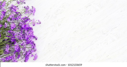Beautiful Spring Floral background with copy space. Composition of purple flowers on white grunge wood background. Top view. Wide Web banner or greeting card for holiday mothers day, birthday, Easter