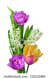 Beautiful spring flowers isolated on white backgroun