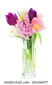 Beautiful spring flowers isolated on white