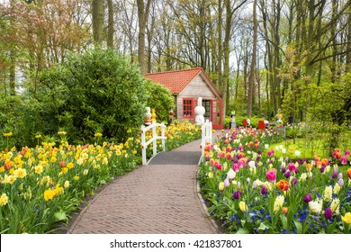 Beautiful spring flowers in keukenhof in Netherlands