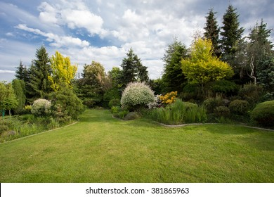 Beautiful spring garden design, with conifer trees, green grass and eneving sun