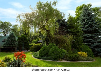 Beautiful spring garden design, with conifer trees, green grass and eneving sun. Luxury design, Gardening. Green garden in spring with flowers and blue sky