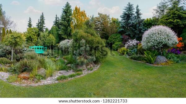 Beautiful Spring Garden Ornamental Conifers Small Royalty Free