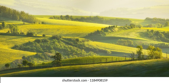 A beautiful spring landscape of the hills of South Moravia in the morning light. Rural landscape of nature with trees and fence on green hills, Czech Republic. Amazing morning light.