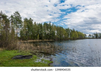 Beautiful spring landscape on the lake Ponkhar on a cloudy day, Ivanovo region, Russia.