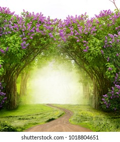 Beautiful spring  landscape.Lilac trees in blossom Magic forest with road. Fantasy  background.