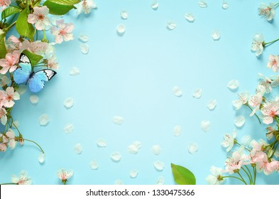 Beautiful spring nature background with butterfly, lovely blossom, petal on turquoise blue background , top view, frame. Springtime concept