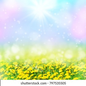 Beautiful spring pattern for design with blooming dandelions