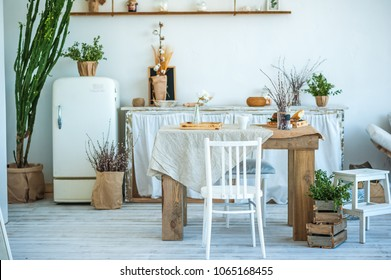 Beautiful spring photo of kitchen interior in light textured colors. Kitchen, living room with beige sofa sofa, old retro white fridge, rustic table, large cactus and woven macrame on the wall