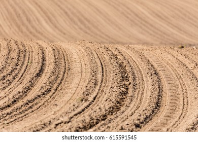 Beautiful spring rural landscape with plowed field curves. Rural landscape. Countryside curve background.