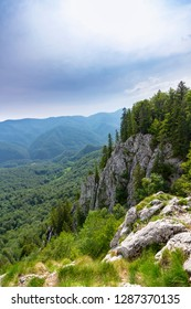 Beautiful spring scenery in the mountains, with fir tree forests and limestone rocks