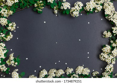 Beautiful spring tiny white flowers on black background in form of frame, textures and backgrounds for text, view from above. Layout of the invitation, template for greeting card