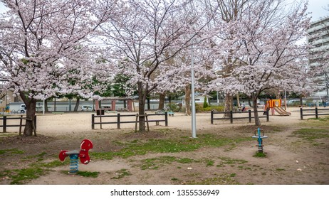 Beautiful spring view with cherry trees in full bloom, seen at a children's playground right beside Suika Tenmangu Shrine in Kyoto City, which is the first Tenmangu Shrine in Japan.