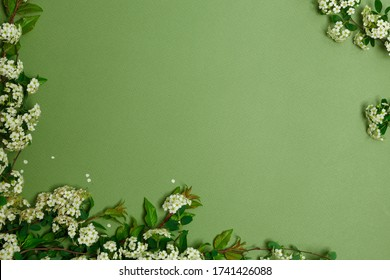 Beautiful spring white flowers on green background, view from above, layout of the invitation, template for greeting card