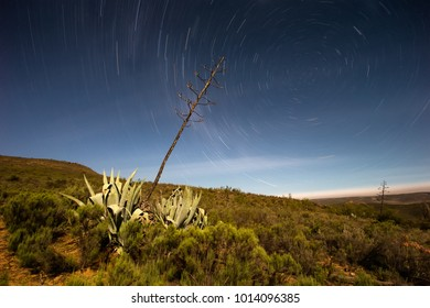 Beautiful star trail landscape image from the little Karoo region close to Uniondale in the Garden Route of South africa
