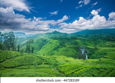 Beautiful st.clairs waterfall landscape in Sri Lanka