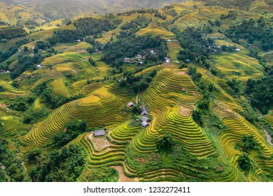 Beautiful step of rice terrace paddle field in sunset and dawn at Muong Hoa valley, sapa, Vietnam. Sapa is beautiful in nature place in Vietnam, Southeast Asia. Travel concept. Aerial view