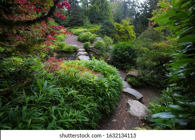 Beautiful stepping stones in a garden