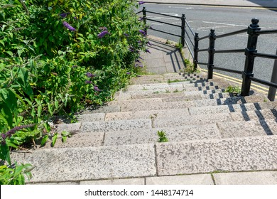 Beautiful stone and concrete steps leading down onto the pavement sidewalk. Flowering Liriope muscari, Liliturf, and leaves framing the image. Space for model, product or copy text. Urban background.