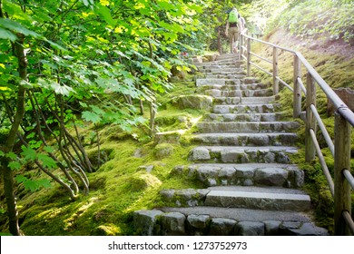 Beautiful Stones steps with wooden rails and some sunlight coming through in the park. Concept of rewards and successful.