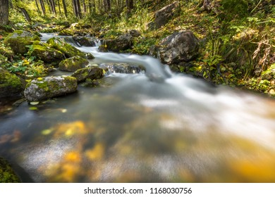 a beautiful stream in the autumn forest