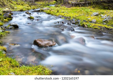 beautiful stream closeup, quiet natural scenery in valley