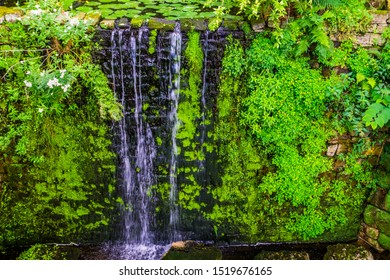 beautiful streaming waterfall, tropical garden architecture, nature background