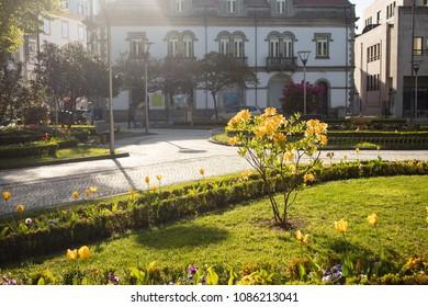 beautiful street in city Viseu, Portugal
