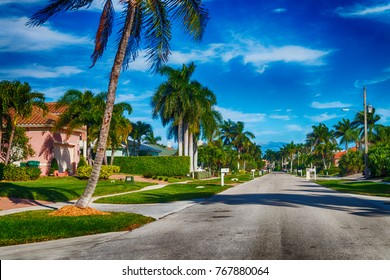 Beautiful street of Floirda with palms and homes.