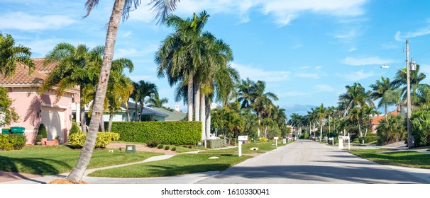 Beautiful street of Florida with palms and homes.