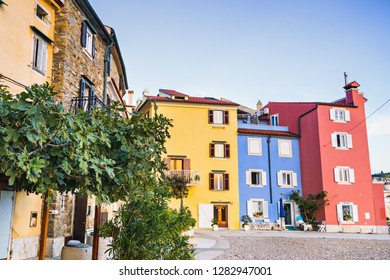 Beautiful street with flowers and colorful houses in Piran town, Slovenia. Famous slovenian tourist destination