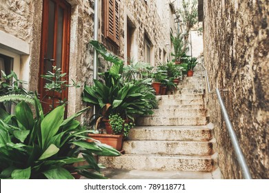 Beautiful street with flowers in the Hvar town, Hvar island, Dalmatia, Croatia