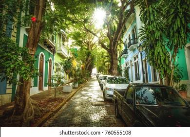 Beautiful street full of trees in old San Juan, Puerto Rico