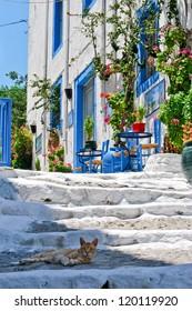 Beautiful street in Kos town