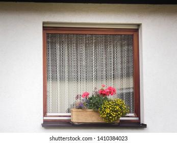 beautiful strict forms window and flower garden, parterre, euro window