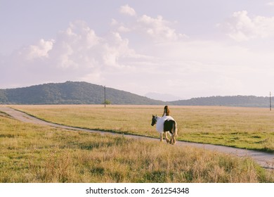 Beautiful and stunning bride, riding a horse in the nature, on her wedding day