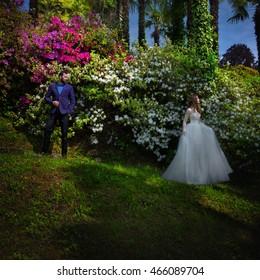 Beautiful stylish newlyweds posing in the garden