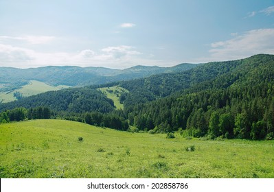 Beautiful summer alpine landscape with green wooded mountains